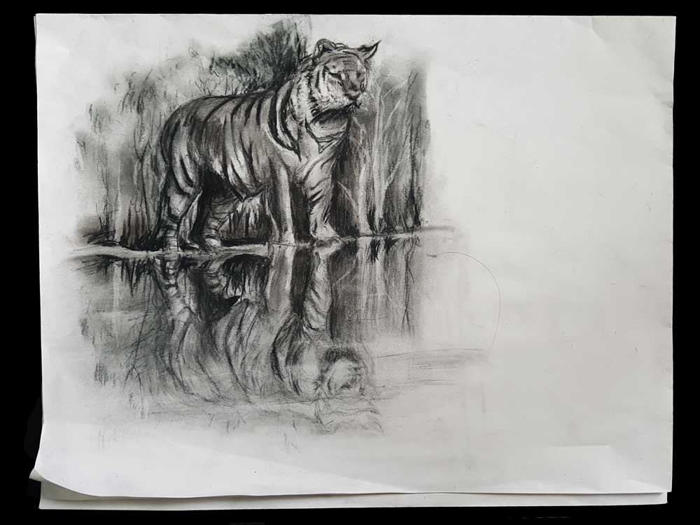 Tijger houtskool tekening (gevouwen krantenpapier 14x25cm) (Sven Bakker)
