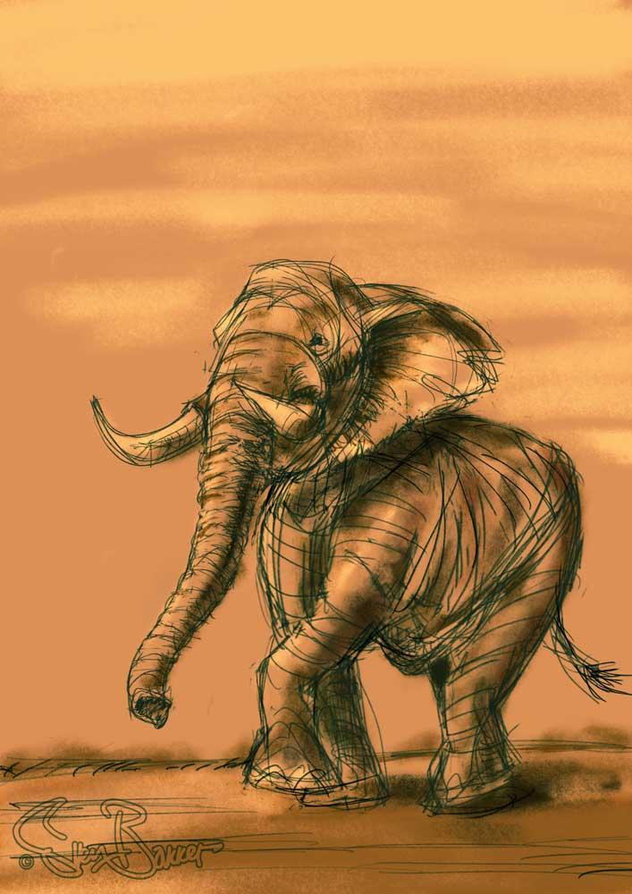 Olifant tekening/schets digitaal. Wacom/Procreate (Sven Bakker)
