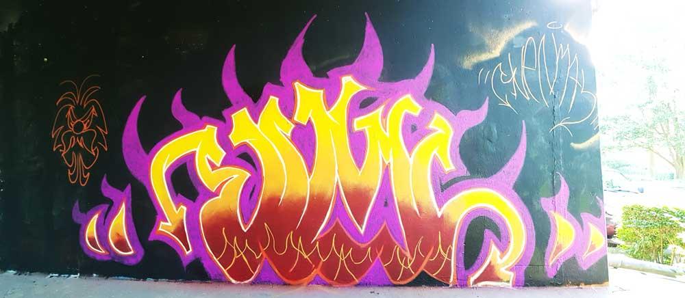 Svenimal vlammen graffiti Amsterdam (Sven Bakker)