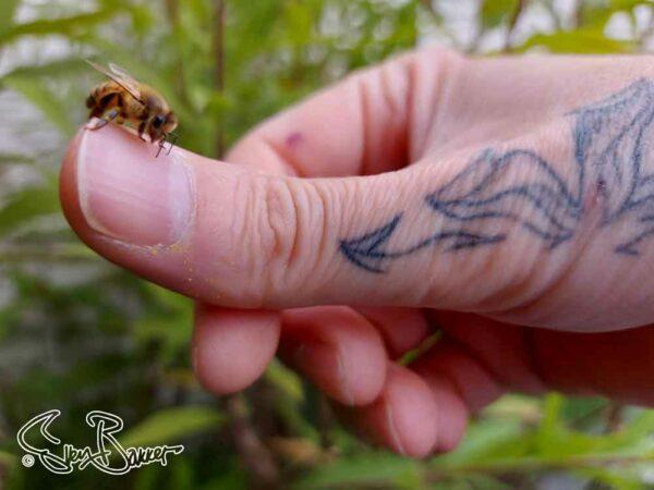 Sun Flower Tattoo Design by Sven Bakker